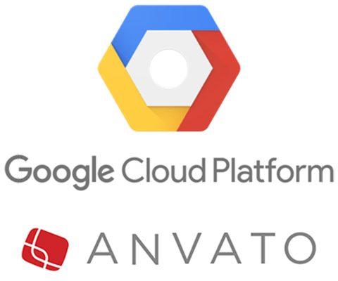 Google, Yeni Bir Firma Satın Aldı!