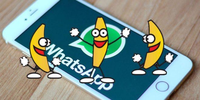 WhatsApp GIF Desteği!