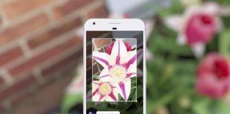 Google Lens Android ve iOS Cihazlara Sunuluyor!